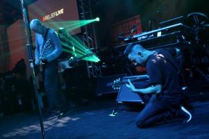 Mike Shinoda, Page Hamilton